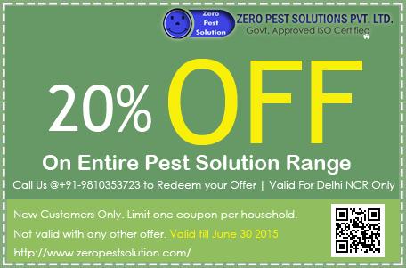 20-percent-off-termite-control