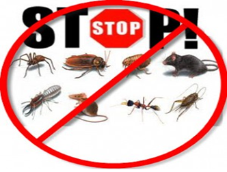 pest control treatment gurgaon