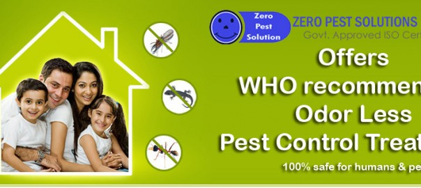 termite-banner